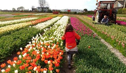 """世界の子育て Vol.1 オランダが""""世界一幸せな子どもの国""""と言われる理由(前編)"""