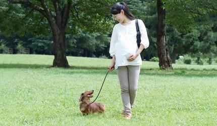 """""""アクティブ妊婦""""は危険? 吉村先生に妊娠期のアクティビティの境界線を聞きました!"""
